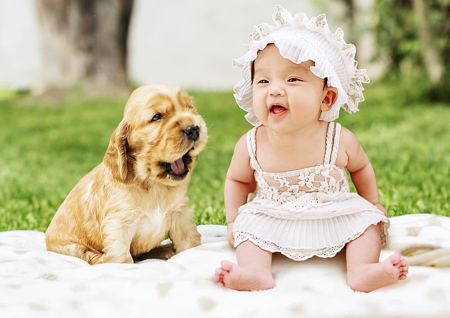 baby dog animal cute Crecer junto a un animal. 4 motivos para hacerlo.